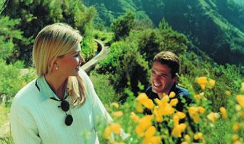 Madeira Fin de Año 19_20 Y Semana Santa 2020